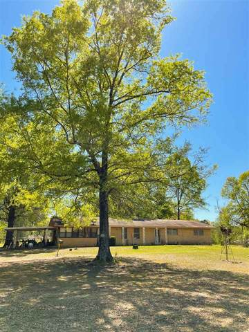307 West St, Douglassville, TX 75560 (MLS #106589) :: Better Homes and Gardens Real Estate Infinity
