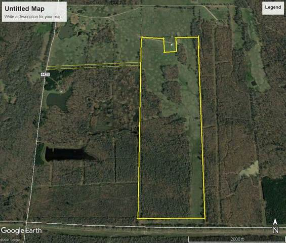 123 Acres Cr 4425, Annona, TX 75550 (MLS #106655) :: Better Homes and Gardens Real Estate Infinity