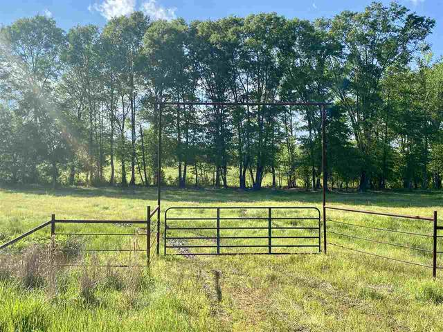 TBD Us Highway 59, Linden, TX 75563 (MLS #106680) :: Better Homes and Gardens Real Estate Infinity