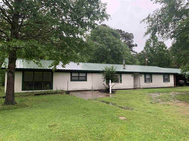 11 Pr 21494, Maud, TX 75567 (MLS #106849) :: Better Homes and Gardens Real Estate Infinity