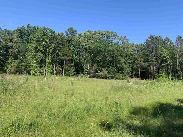 TBD Fm 251, Bivins, TX 75555 (MLS #106880) :: Better Homes and Gardens Real Estate Infinity