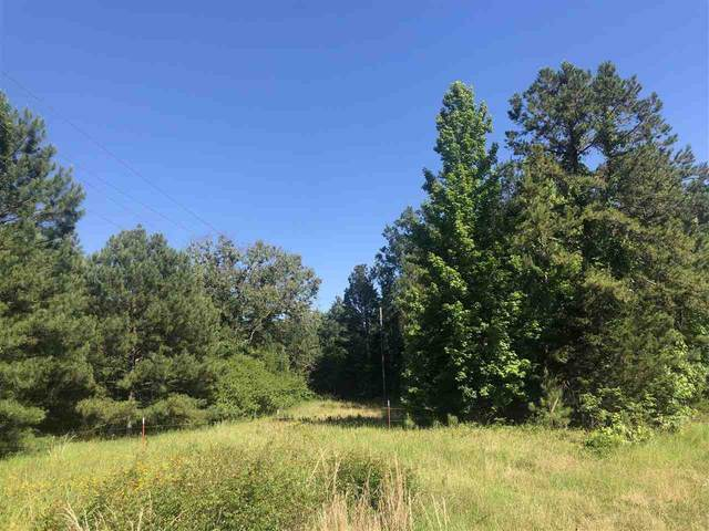 25 ac ± TBD Cr 3993, Bloomburg, TX 75556 (MLS #107119) :: Better Homes and Gardens Real Estate Infinity
