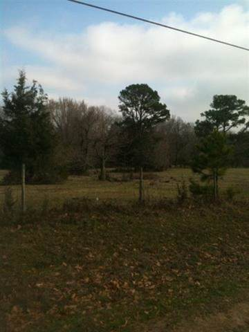 0 County Road 1214, Redwater, TX 75573 (MLS #107347) :: Better Homes and Gardens Real Estate Infinity