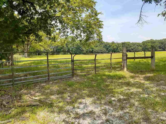 TBD Cr 4102, New Boston, TX 75570 (MLS #107419) :: Better Homes and Gardens Real Estate Infinity