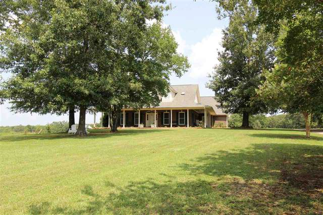 2407 Cr 4122, Simms, TX 75574 (MLS #107655) :: Better Homes and Gardens Real Estate Infinity