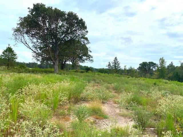 49 ac ± TBD Cr 4230, Atlanta, TX 75551 (MLS #107794) :: Better Homes and Gardens Real Estate Infinity