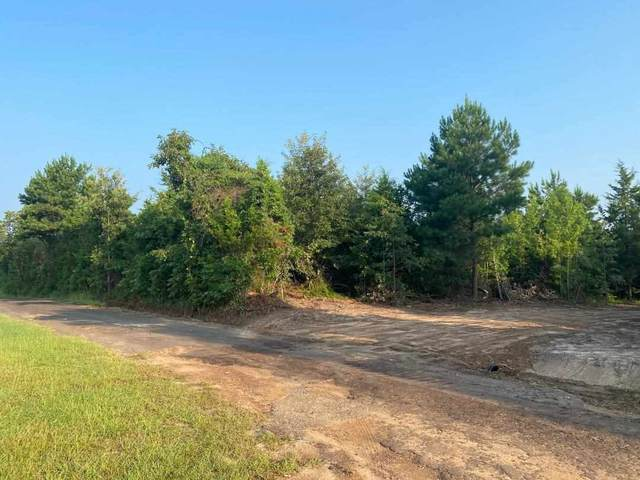 15.9 ac ± TBD Cr 4344, Bivins, TX 75555 (MLS #107915) :: Better Homes and Gardens Real Estate Infinity