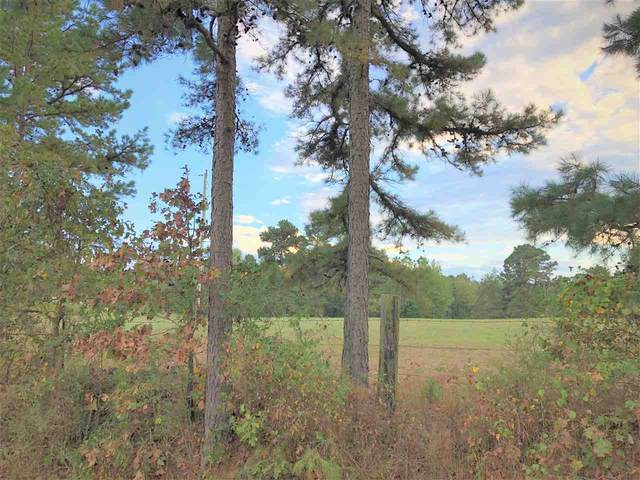 MC 31 35-19S-28W, Brightstar, AR 71834 (MLS #107919) :: Better Homes and Gardens Real Estate Infinity