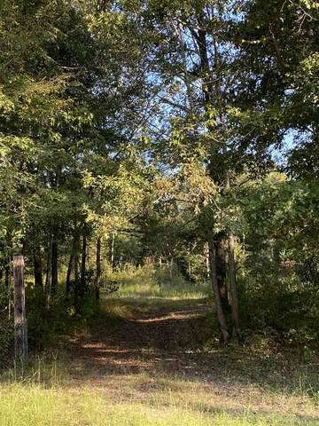 TBD Dyke Thomas Rd, Texarkana, TX 75501 (MLS #107978) :: Better Homes and Gardens Real Estate Infinity