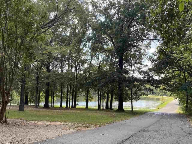 6401 Edgehill Circle, Texarkana, AR 71854 (MLS #108013) :: Better Homes and Gardens Real Estate Infinity