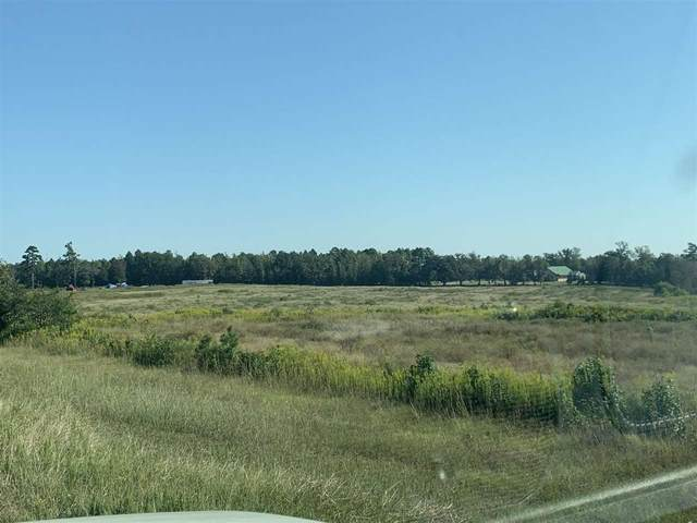 TBD Hwy 59 & Cr 1754, Linden, TX 75563 (MLS #108024) :: Better Homes and Gardens Real Estate Infinity
