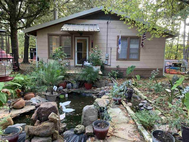563 County Road 1206, Maud, TX 75567 (MLS #108031) :: Better Homes and Gardens Real Estate Infinity