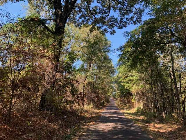 TBD Cr 1127 (West Tract), Linden, TX 75563 (MLS #108037) :: Better Homes and Gardens Real Estate Infinity