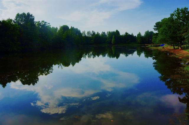 Lot 16 Beaver Lake Estates, Redwater, TX 75503 (MLS #96784) :: Coldwell Banker Elite