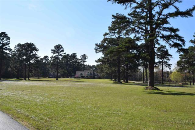 1519 Proetz, Nash, TX 75501 (MLS #97963) :: Coldwell Banker Elite