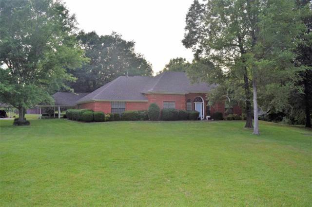 565 Mc 118, Texarkana, AR 71854 (MLS #98645) :: The Chad Raney Team