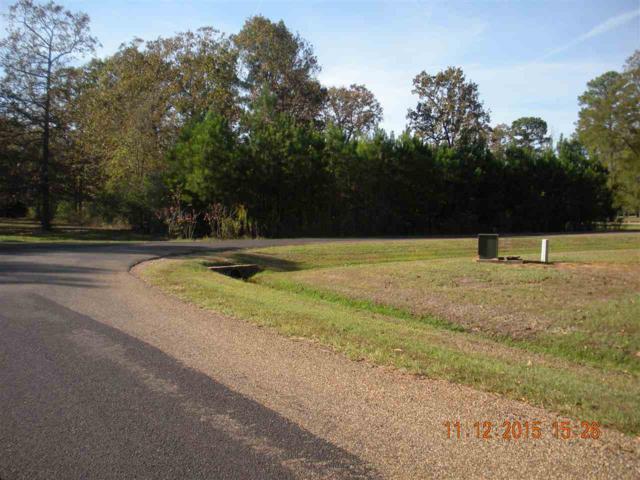 Lot 21 Beaver Lake Estates, Nash, TX 75501 (MLS #99246) :: Coldwell Banker Elite
