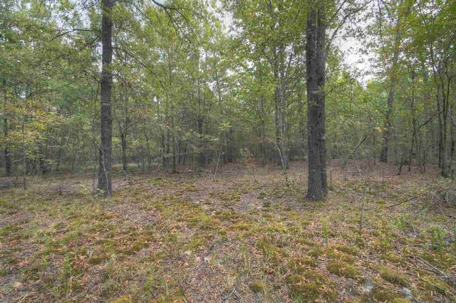 0 Lr 43, Ashdown, AR 71822 (MLS #94731) :: Better Homes and Gardens Real Estate Infinity