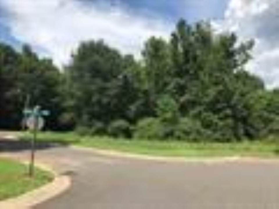 TBD (308) Spring Valley Road - Photo 1