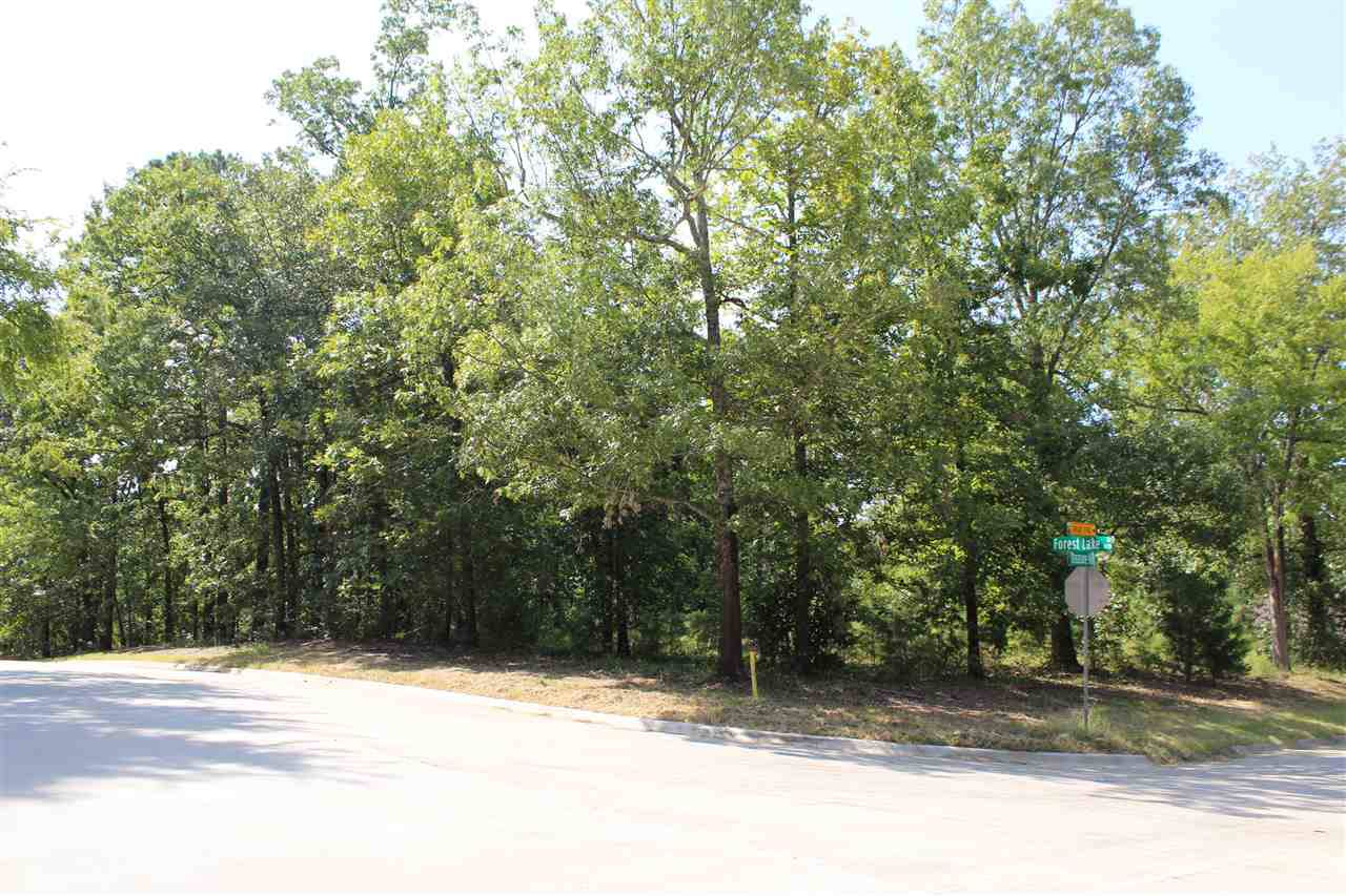 Lot 7 Forest Lake Dr - Photo 1