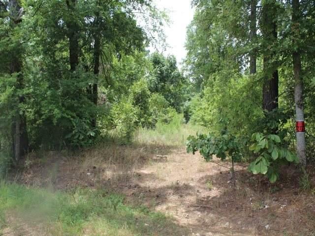 435 County Road 3213 - Photo 1