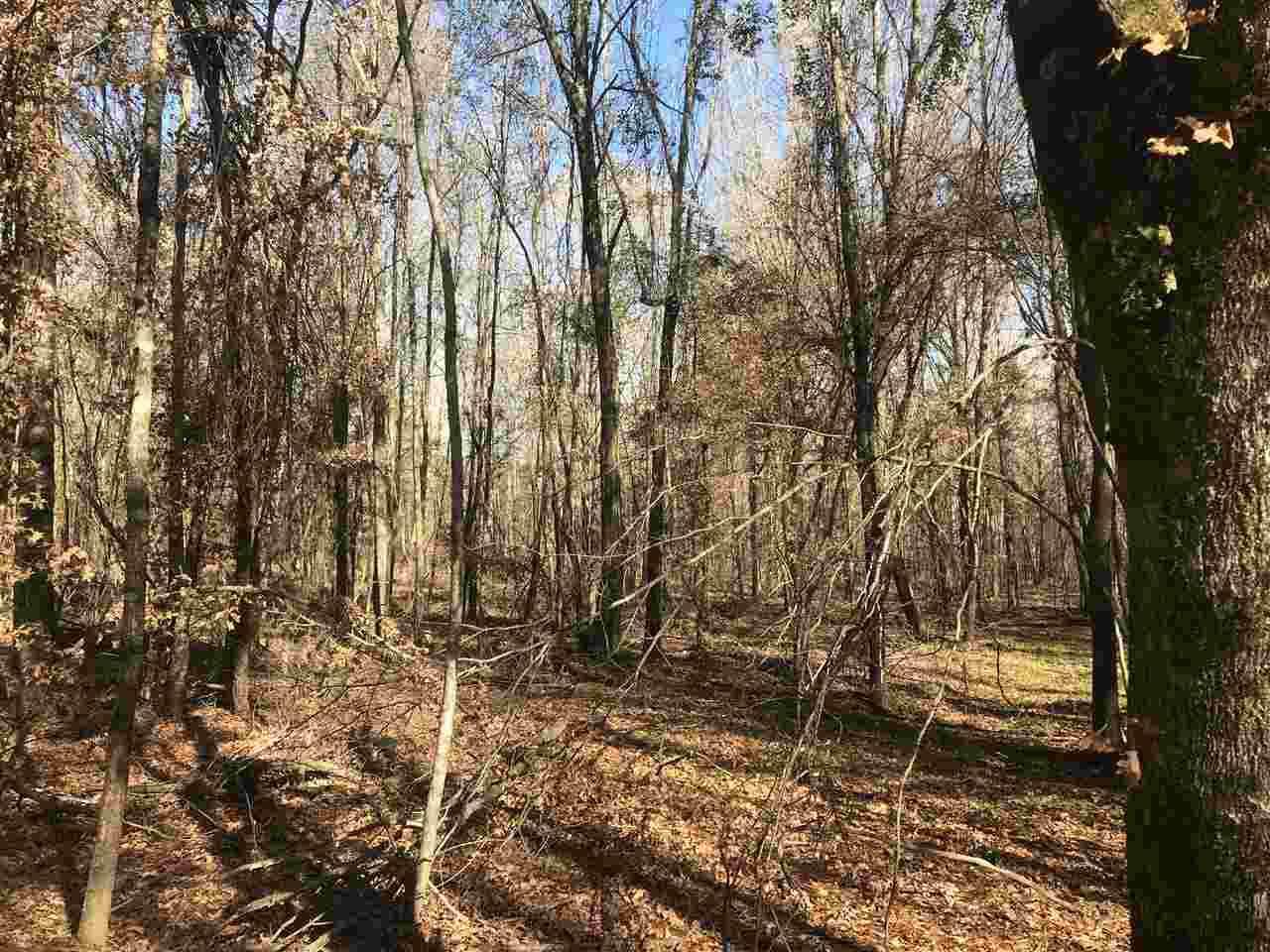 20 acres Mc 5 - Photo 1