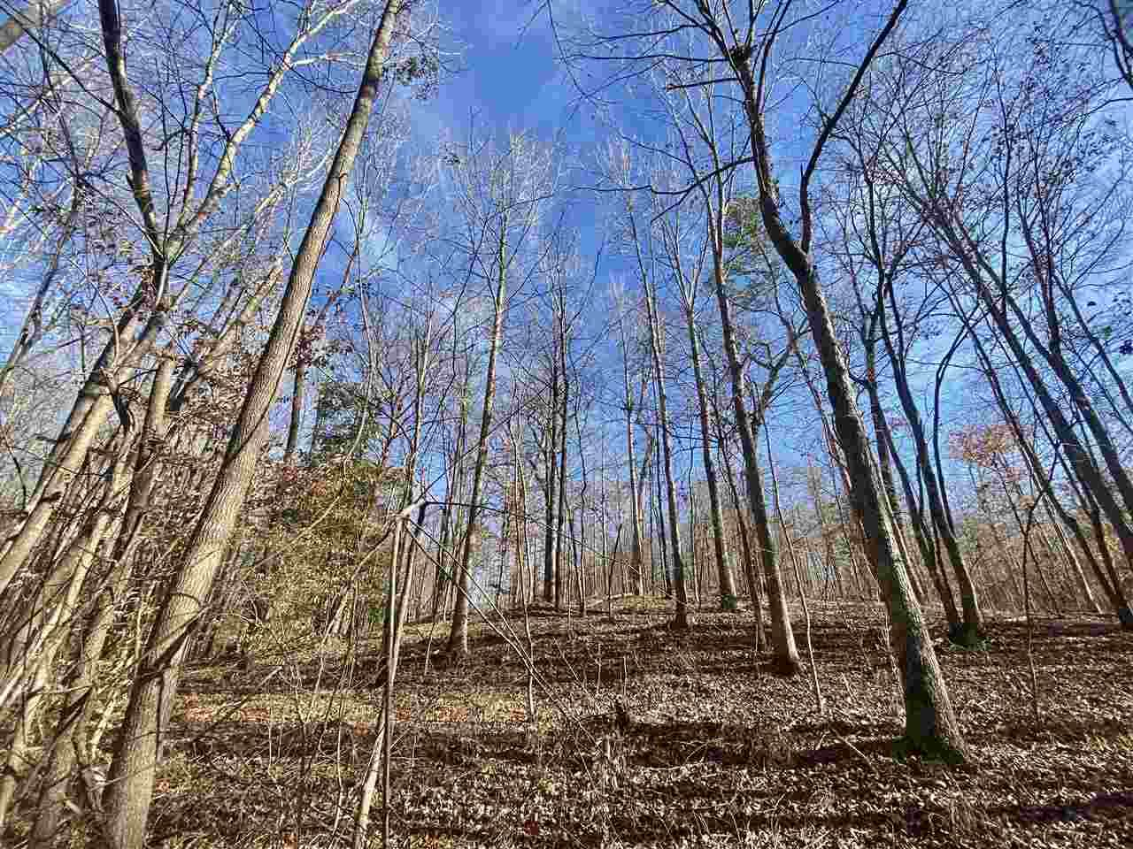 27 Acres Mc 285 - Photo 1