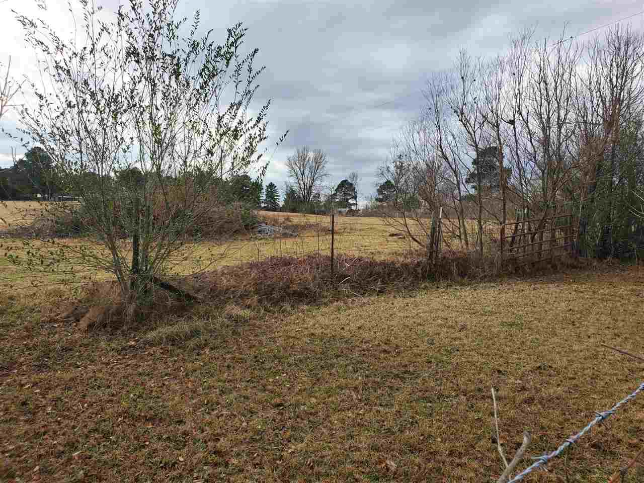 10 acres Tennessee Rd - Photo 1