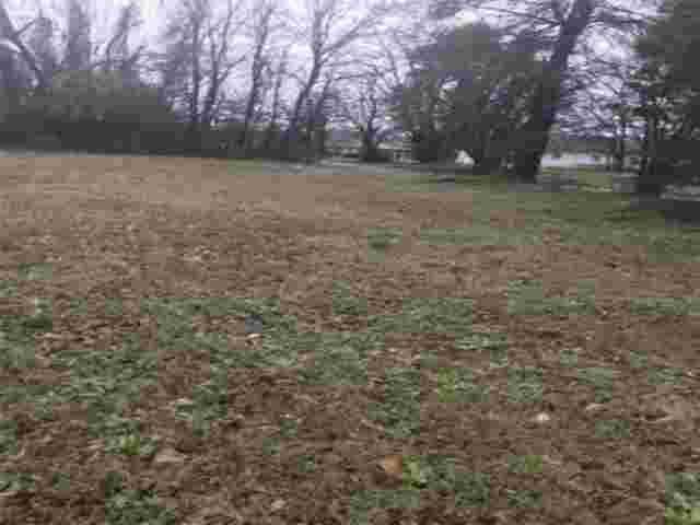 921 Beech, Texarkana, AR 71854 (MLS #106577) :: Better Homes and Gardens Real Estate Infinity