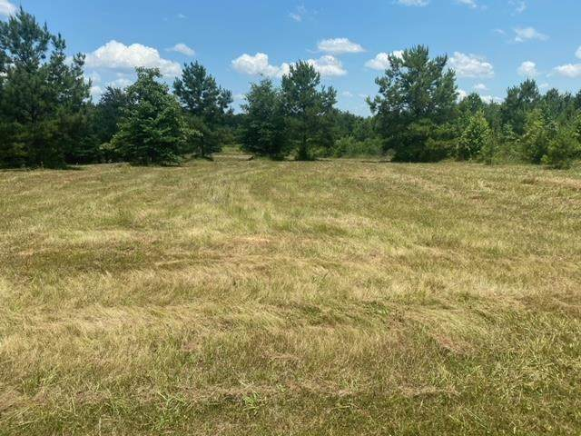 TBD Collier Rd, Bradley, AR 71826 (MLS #107177) :: Better Homes and Gardens Real Estate Infinity