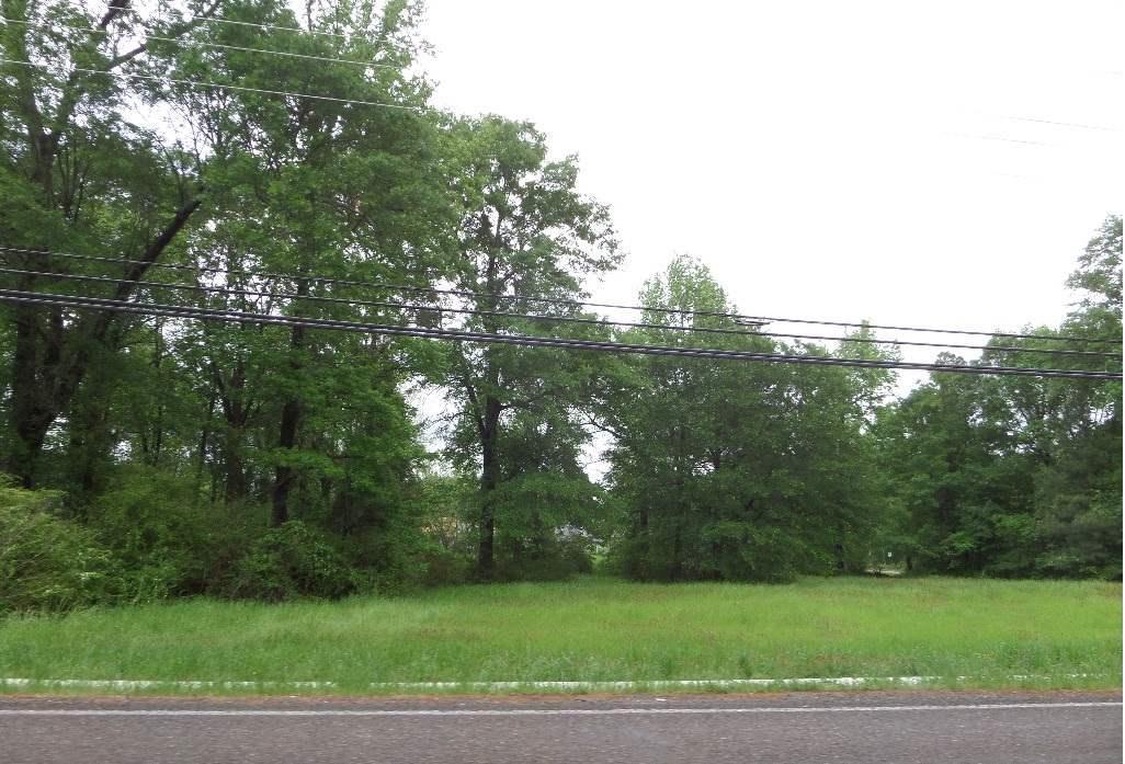 0 E New Boston Road - Photo 1