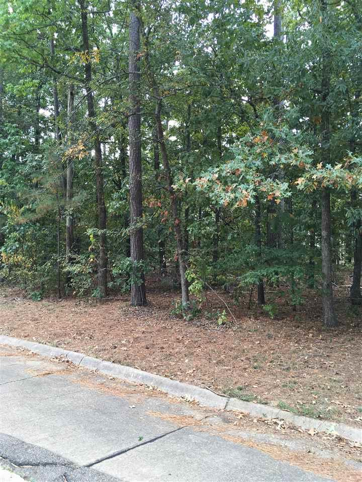 13 acres Forest Lake Drive - Photo 1