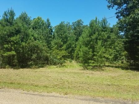 4.99 acres Mc 422, Texarkana, AR 71854 (MLS #98599) :: The Chad Raney Team