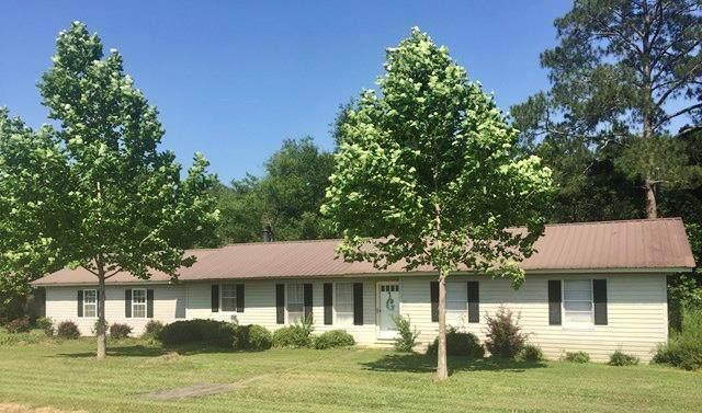 565 Reagan Road, Rebecca, GA 31783 (MLS #130913) :: Lindy's Town and Country Real Estate | Keller Willimas Middle GA