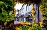 2329 Clark Avenue - Photo 17