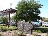 TBD Union Grove Church Road - Photo 10