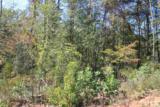 TBD-2 Pisgah Ridge Circle - Photo 1