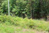 Lot 2 Us 401 Highway - Photo 2