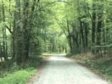 420 Dragonfly Trail - Photo 2