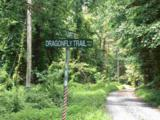 420 Dragonfly Trail - Photo 9