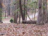 0 Driftwood Court - Photo 19