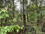 8292 Pine Wood Road - Photo 4