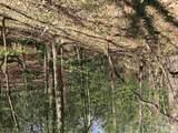 Meadow Drive - Photo 7