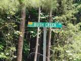 76 Bush Creek Lane - Photo 1