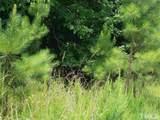 76 Bush Creek Lane - Photo 3