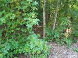 133 Forked Pine - Photo 9