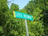 325 Little Rosewood Lane - Photo 3