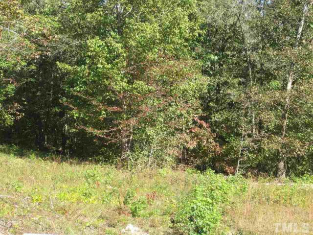 1428 Pitty Pats Path, Zebulon, NC 27597 (#2096261) :: The Perry Group