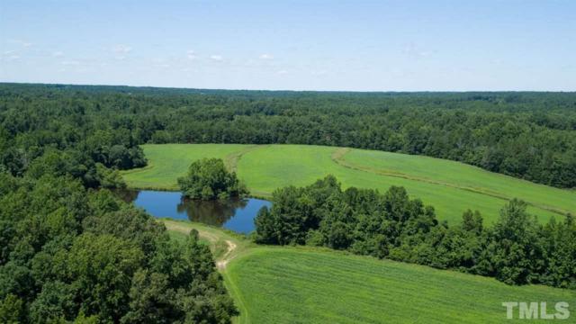 3344 Cobb Farm Trail, Mebane, NC 27302 (#2143448) :: The Jim Allen Group
