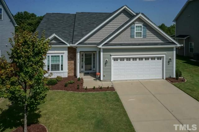 244 Sweet Violet Drive, Holly Springs, NC 27540 (#2152453) :: The Jim Allen Group